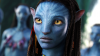 cemil243's Avatar